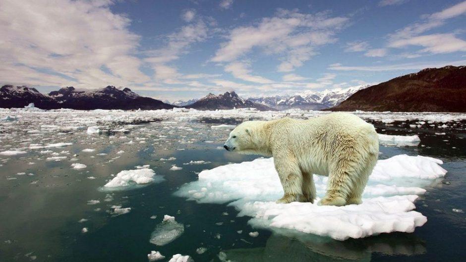 Küresel Isınma ve İklim Değişikliği 1000x563