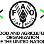 Gıda Tarım Örgütü Food and Agriculture Organization, FAO peyzaj3m 800x502
